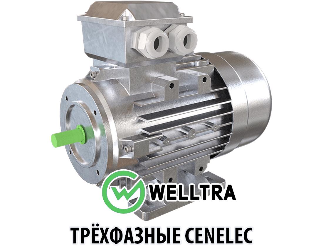 Трёхфазные электродвигатели Cenelec